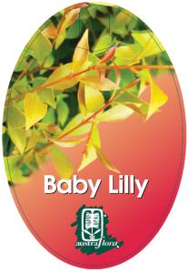 Acmena-Baby-Lilly-208x300