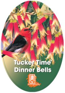 Correa-Dinner-Bells-210x300