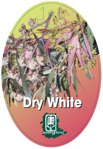 Eucalyptus-Dry-White-209x300