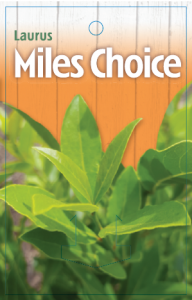 Laurus-Miles-Choice-192x300