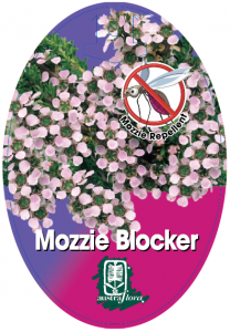 Leptospermum-Mozzie-Blocker-208x300