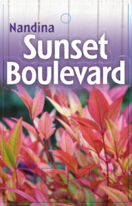 Nandina-Sunset-Boulevard-192x300