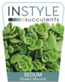 Sedum-Green-Mound-137x300